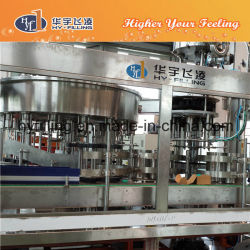 4L Pet Bottle Pure Water Bottling Machine (CGN Series)