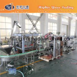 Flavored Water Filling Machinery for Pet Bottle (CGN Series)
