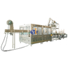 Updated Save Labor Fully Automatic PET Bottle Carbonated Soft Drink Filling Machine